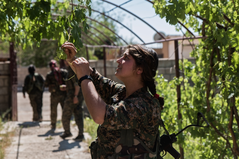 A female fighter looks for grapes among an abandoned Christian village